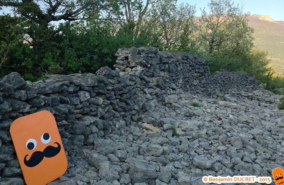 Valro sur les ruines du Fierloz